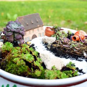 Minigrădini decorative